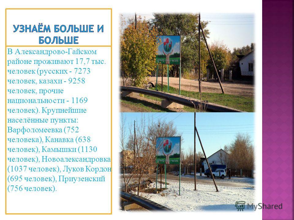 В Александрово-Гайском районе проживают 17,7 тыс. человек (русских - 7273 человек, казахи - 9258 человек, прочие национальности - 1169 человек). Крупнейшие населённые пункты: Варфоломеевка (752 человека), Канавка (638 человек), Камышки (1130 человек)