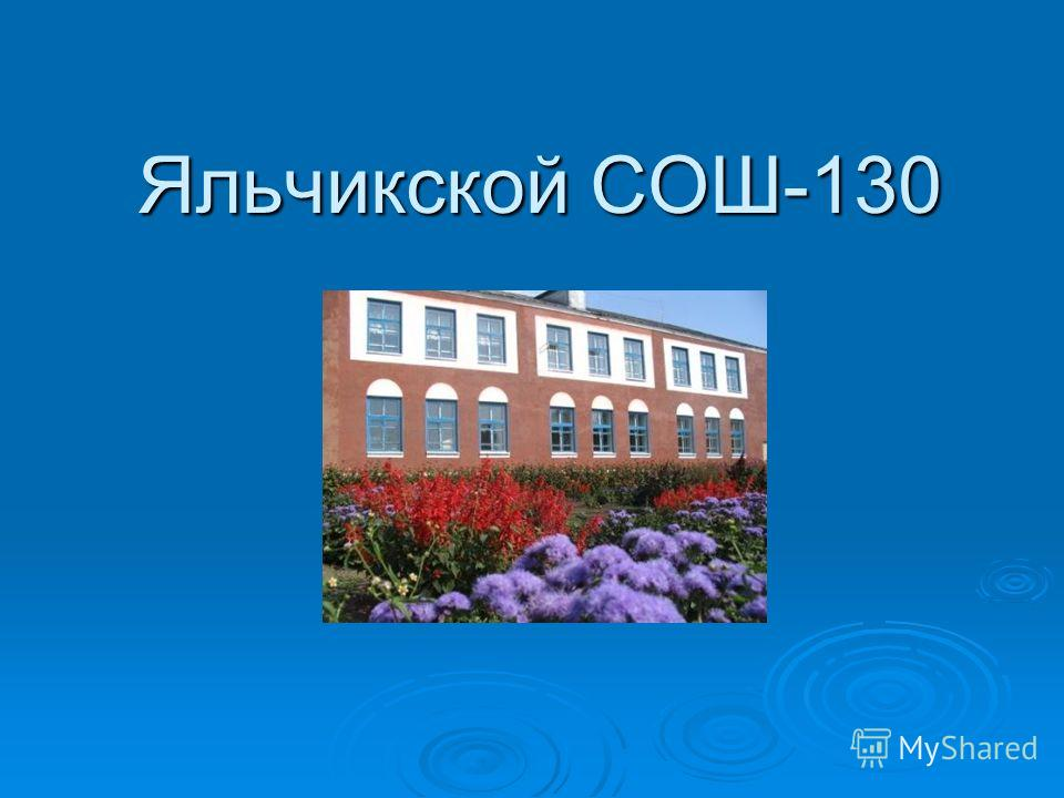 Яльчикской СОШ-130