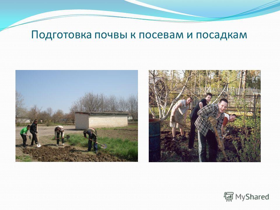 Подготовка почвы к посевам и посадкам