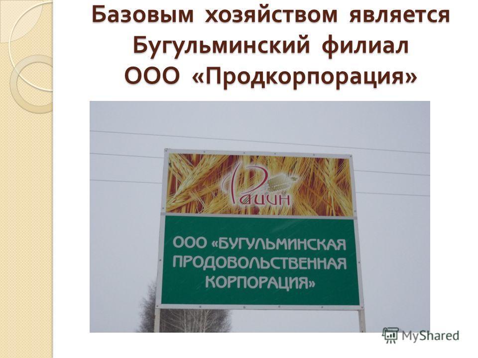 Базовым хозяйством является Бугульминский филиал ООО « Продкорпорация »
