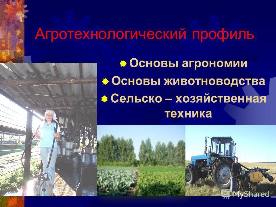 Агротехнологический профиль Основы агрономии Основы животноводства Сельско – хозяйственная техника