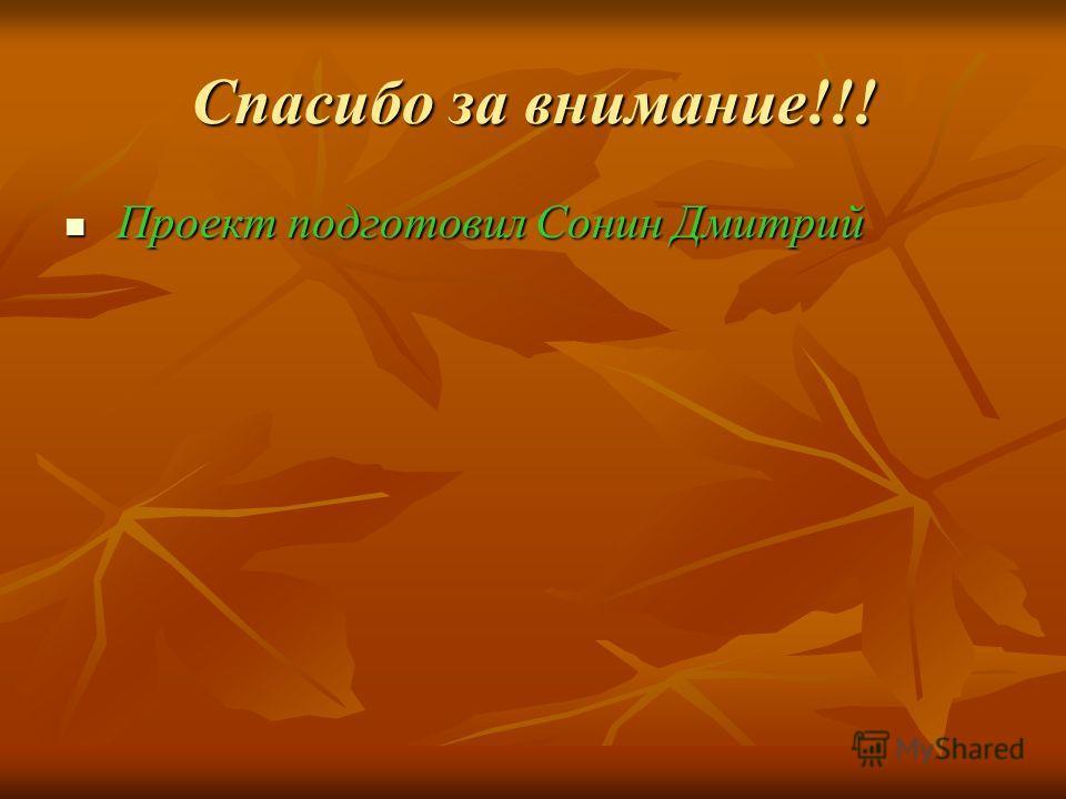 Спасибо за внимание!!! Проект подготовил Сонин Дмитрий Проект подготовил Сонин Дмитрий