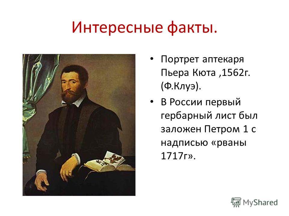 Интересные факты. Портрет аптекаря Пьера Кюта,1562г. (Ф.Клуэ). В России первый гербарный лист был заложен Петром 1 с надписью «рваны 1717г».