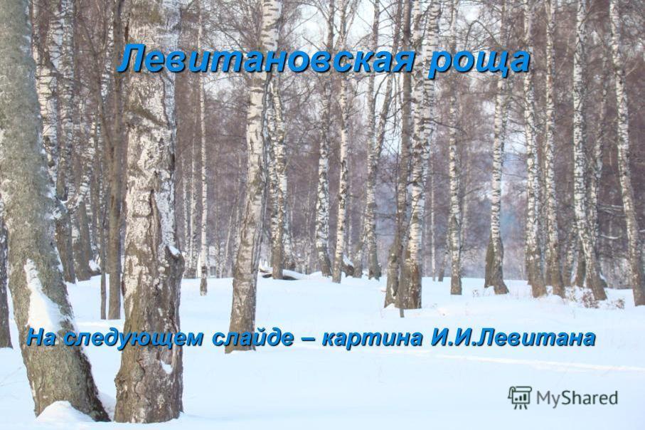 Левитановская роща На следующем слайде – картина И.И.Левитана На следующем слайде – картина И.И.Левитана
