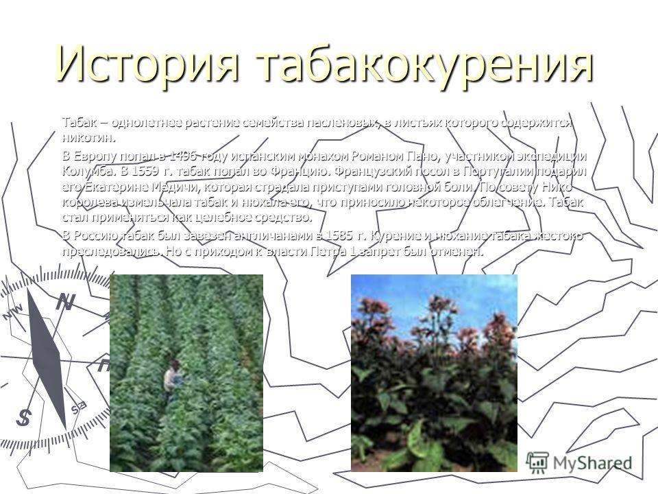 История табакокурения Табак – однолетнее растение семейства пасленовых, в листьях которого содержится никотин. В Европу попал в 1496 году испанским монахом Романом Пано, участником экспедиции Колумба. В 1559 г. табак попал во Францию. Французский пос