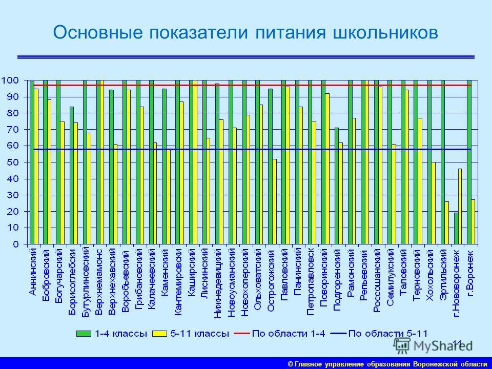 © Главное управление образования Воронежской области 10 Компьютеризация образования: современных компьютеров на 100 учащихся