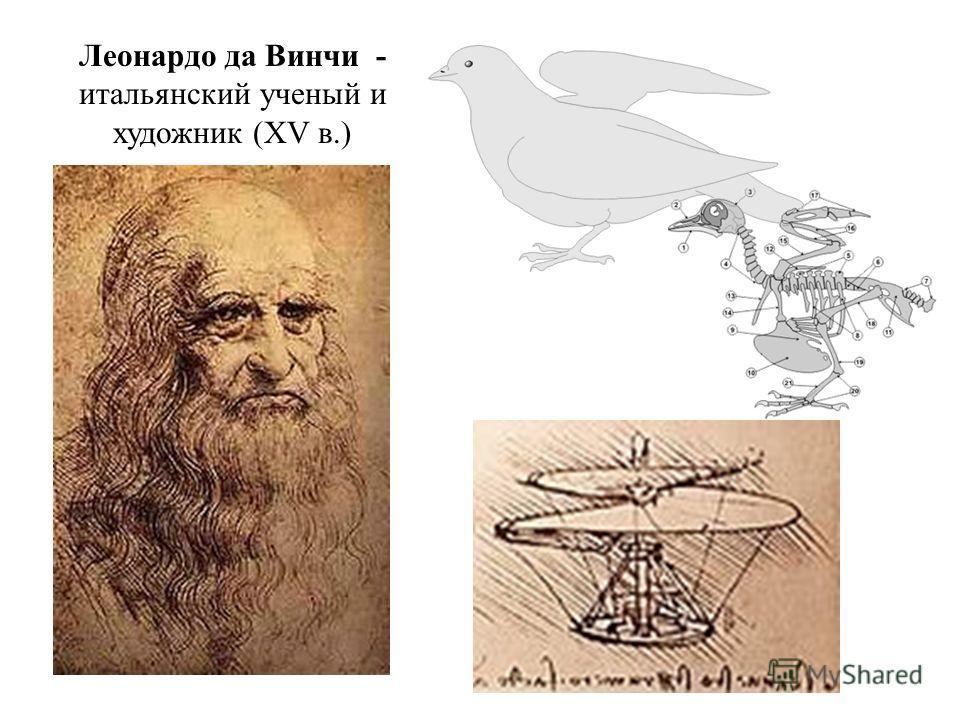 Леонардо да Винчи - итальянский ученый и художник (XV в.)