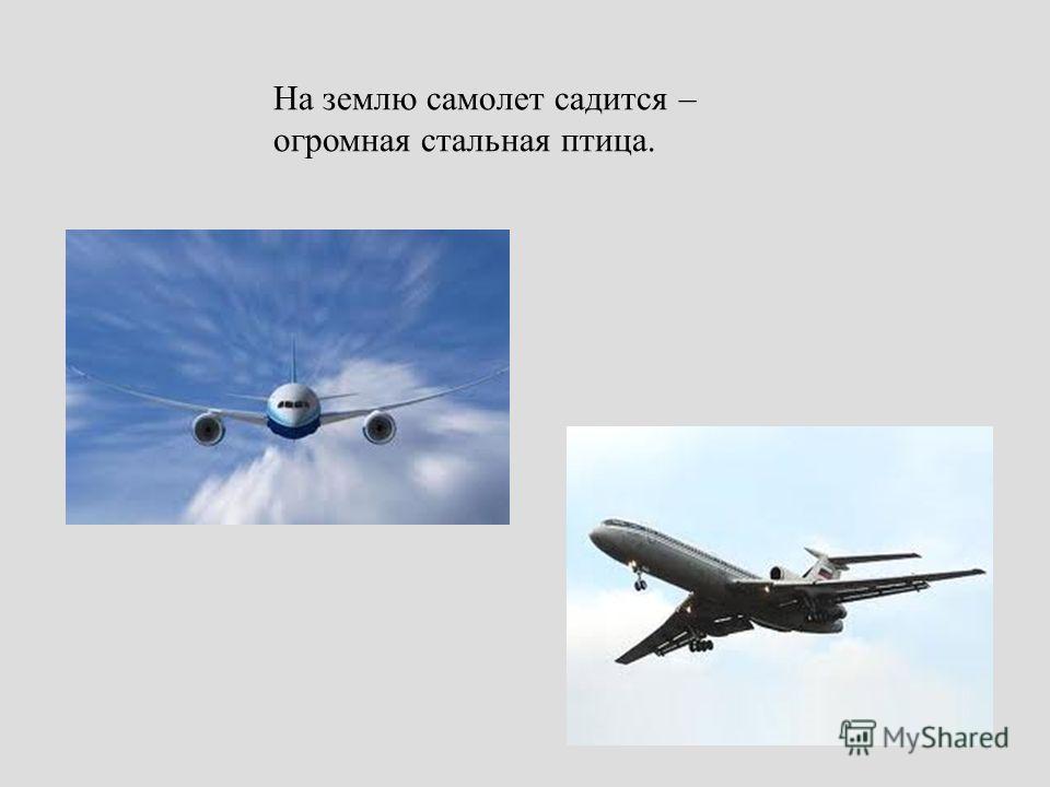 На землю самолет садится – огромная стальная птица.
