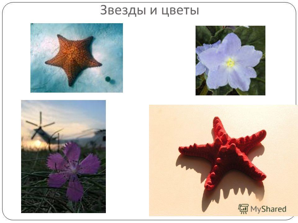 Звезды и цветы