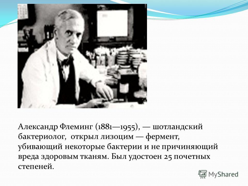Александр Флеминг (18811955), шотландский бактериолог, открыл лизоцим фермент, убивающий некоторые бактерии и не причиняющий вреда здоровым тканям. Был удостоен 25 почетных степеней.
