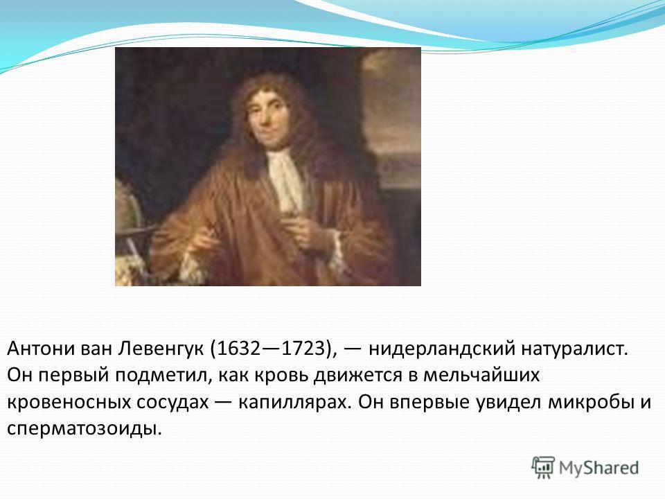 Антони ван Ле Антони ван Левенгук (16321723), нидерландский натуралист. Он первый подметил, как кровь движется в мельчайших кровеносных сосудах капиллярах. Он впервые увидел микробы и сперматозоиды.