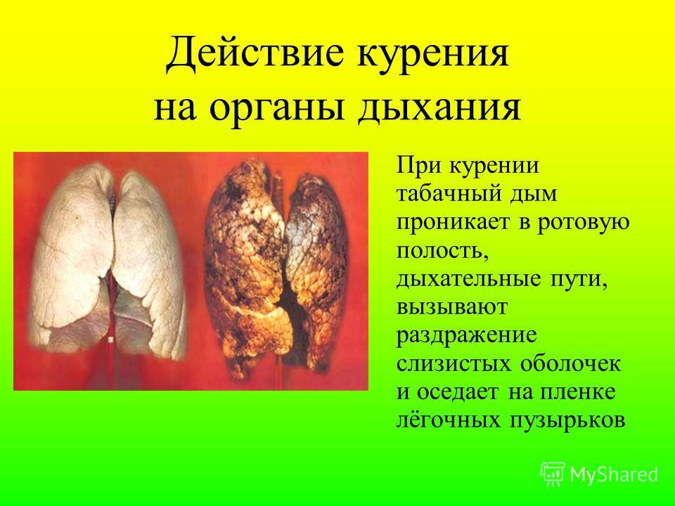 Воздействие табака на организм инсульты § рак губ, полости рта, горла и гортани § повышается риск сердечного приступа § рак лёгких § рак печени § язва и рак желудка, поджелудочной железы § бесплодие §гангрена, вызванная закупоркой сосудов