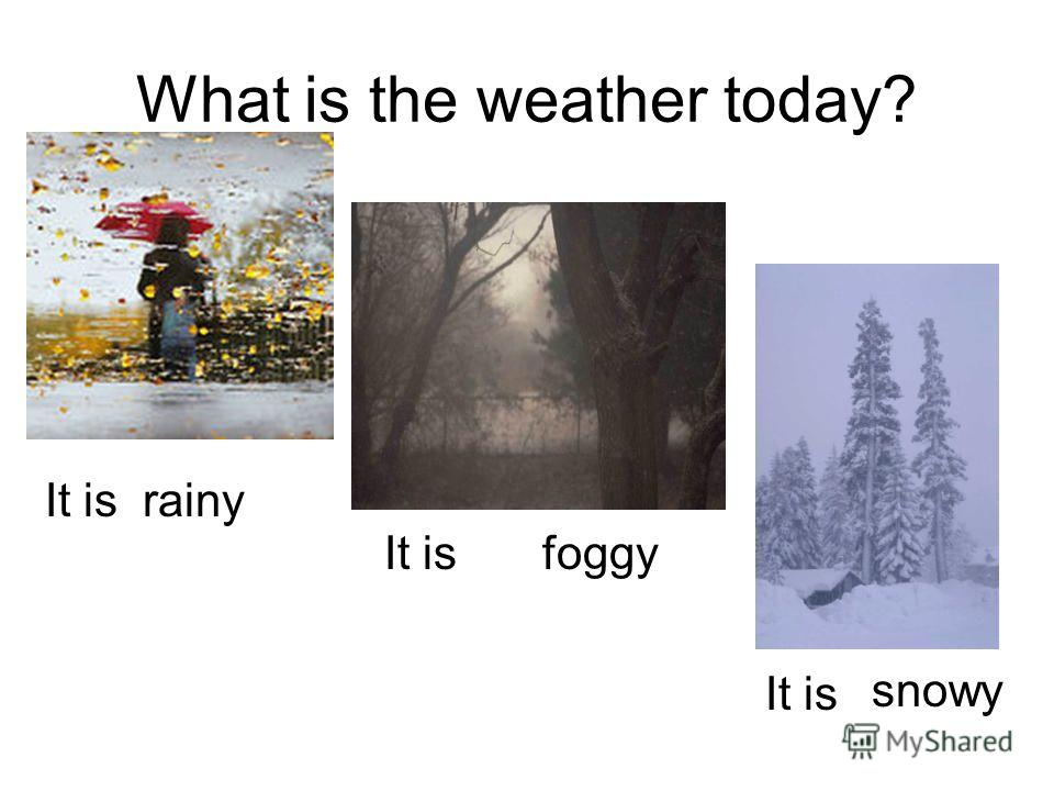 What is the weather today? It is foggy snowy rainy It is