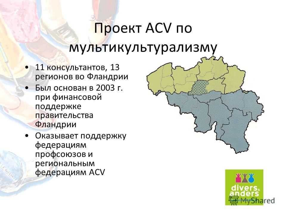 Проект ACV по мультикультурализму 11 консультантов, 13 регионов во Фландрии Был основан в 2003 г. при финансовой поддержке правительства Фландрии Оказывает поддержку федерациям профсоюзов и региональным федерациям ACV