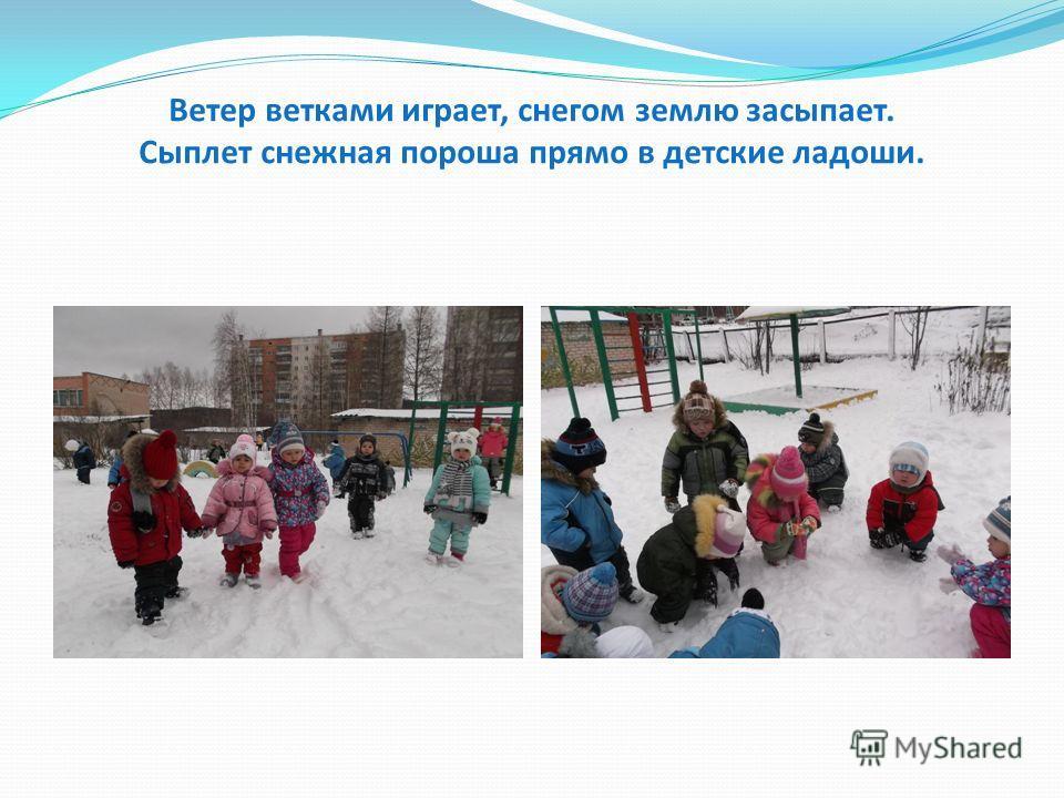 Ветер ветками играет, снегом землю засыпает. Сыплет снежная пороша прямо в детские ладоши.