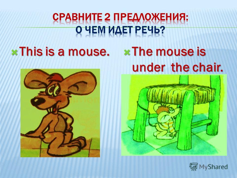 This is a mouse. This is a mouse. The mouse is under the chair. The mouse is under the chair.