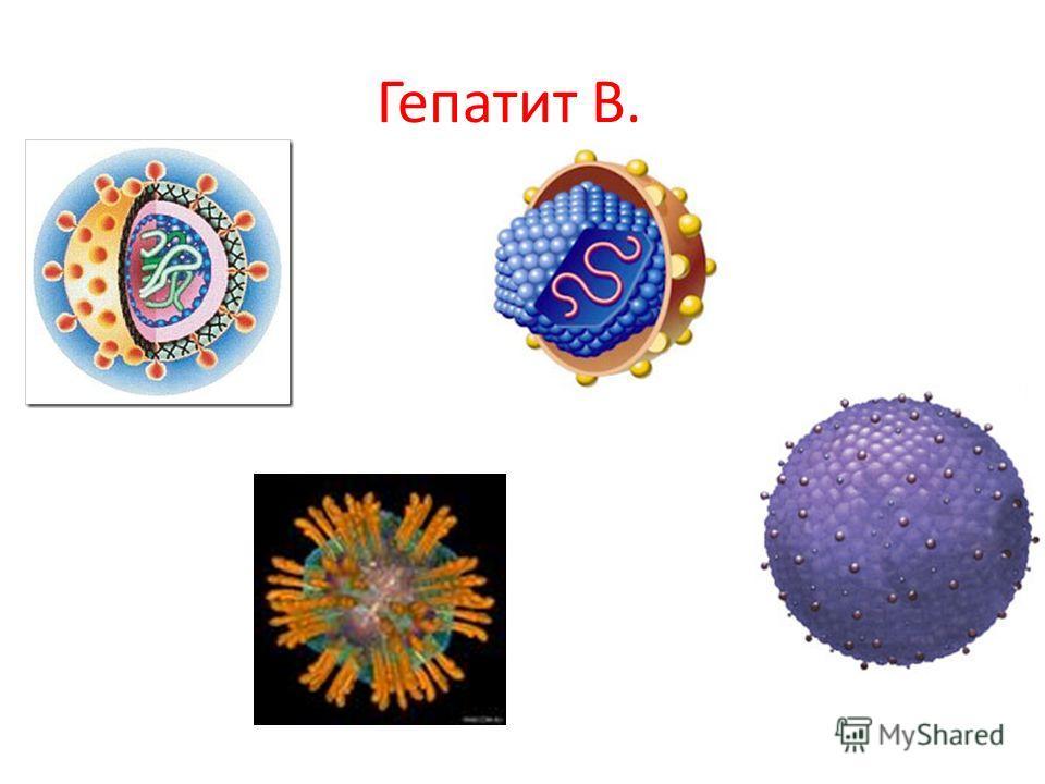 Гепатит В.