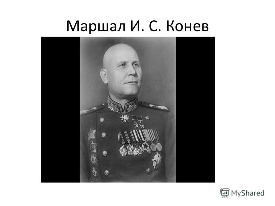 Маршал И. С. Конев