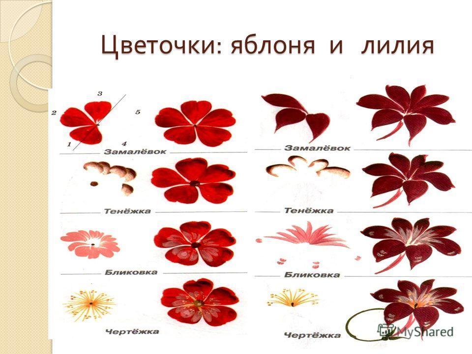 Цветочки : яблоня и лилия