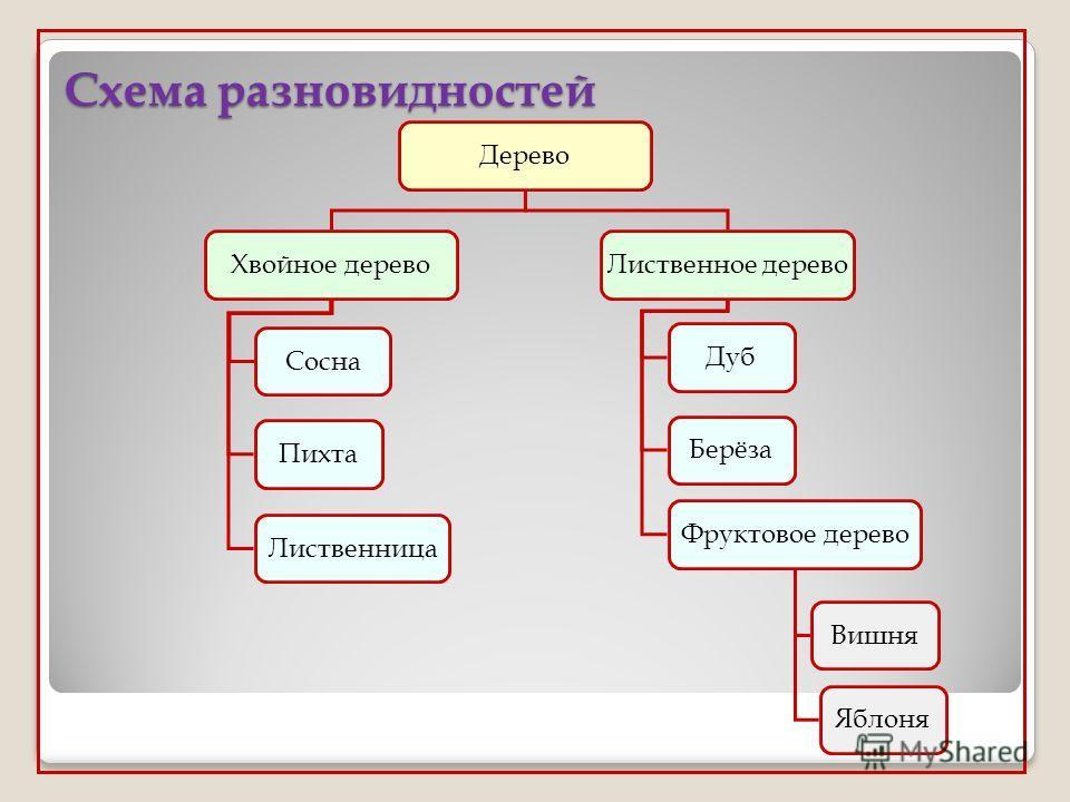 Схема разновидностей Дерево