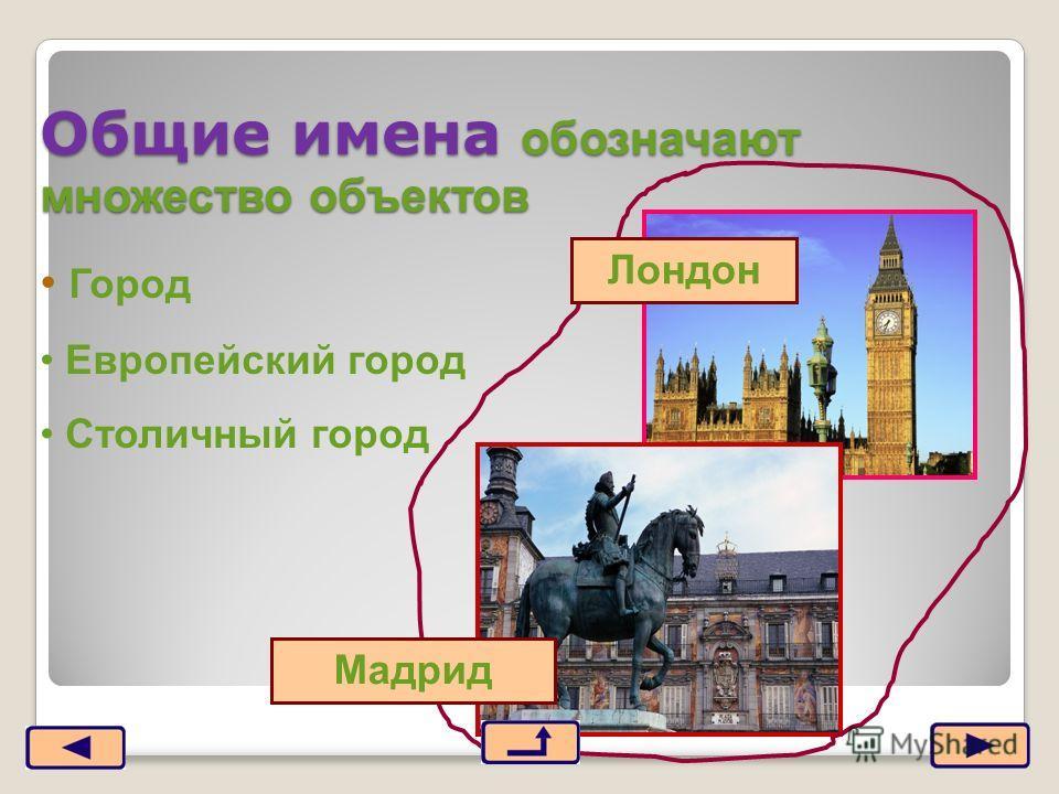 Общие имена обозначают множество объектов Город Европейский город Столичный город Мадрид Лондон