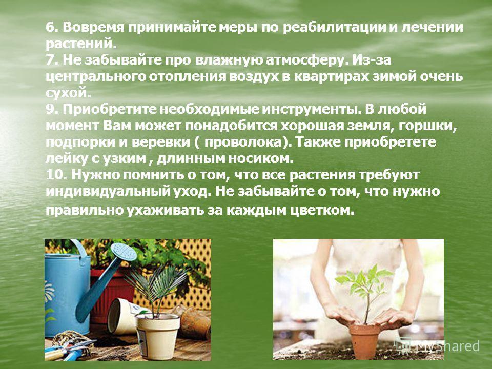 6. Вовремя принимайте меры по реабилитации и лечении растений. 7. Не забывайте про влажную атмосферу. Из-за центрального отопления воздух в квартирах зимой очень сухой. 9. Приобретите необходимые инструменты. В любой момент Вам может понадобится хоро