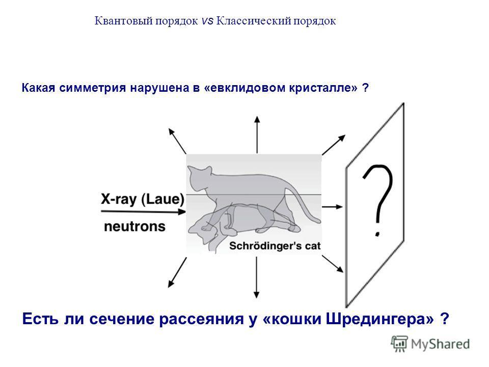 Какая симметрия нарушена в «евклидовом кристалле» ? Есть ли сечение рассеяния у «кошки Шредингера» ? Квантовый порядок vs Классический порядок