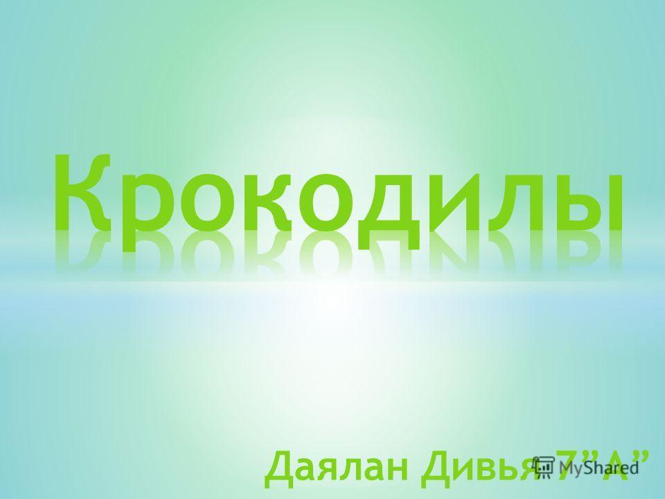 Даялан Дивья 7А