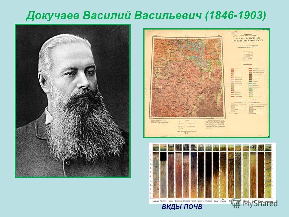 Докучаев Василий Васильевич (1846-1903) ВИДЫ ПОЧВ