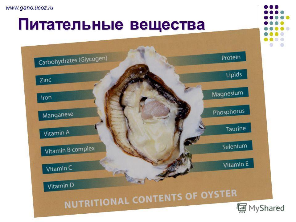 5 Питательные вещества www.gano.ucoz.ru