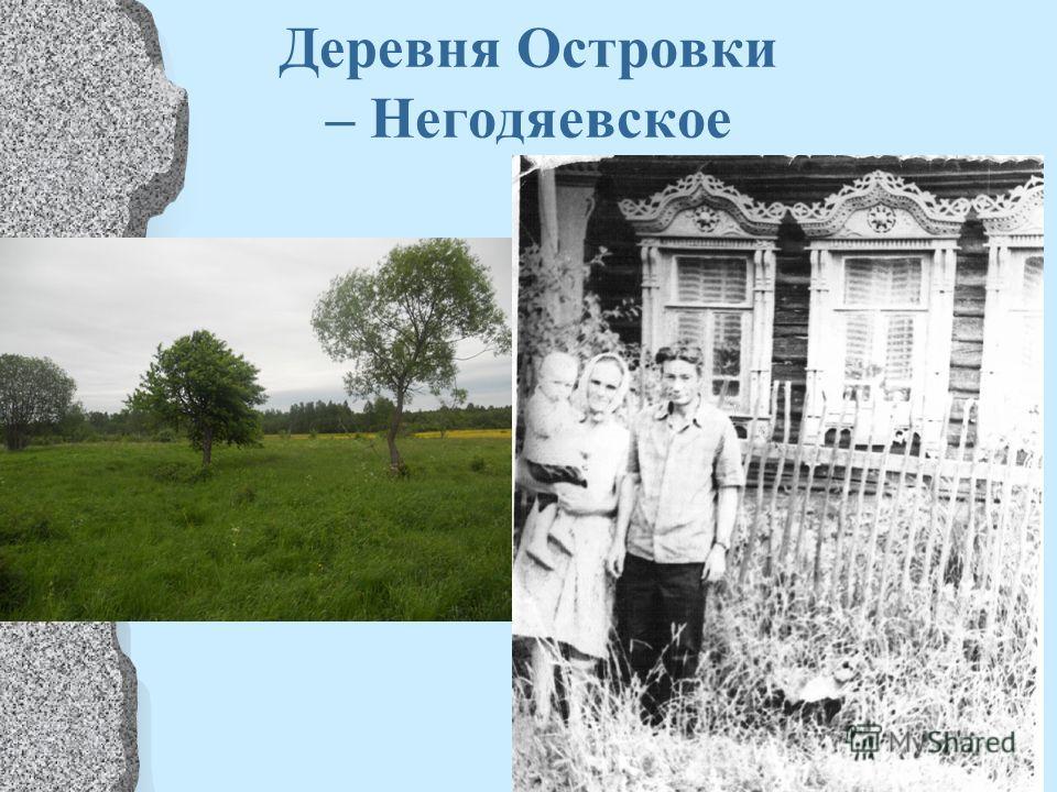 Деревня Островки – Негодяевское