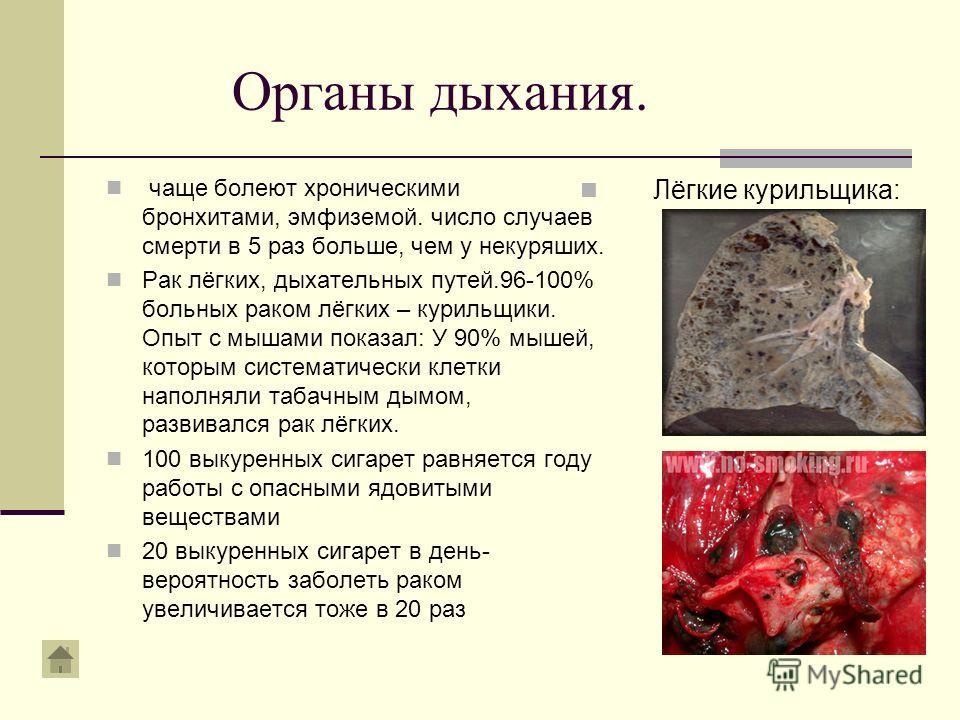 Органы дыхания. чаще болеют хроническими бронхитами, эмфиземой. число случаев смерти в 5 раз больше, чем у некуряших. Рак лёгких, дыхательных путей.96-100% больных раком лёгких – курильщики. Опыт с мышами показал: У 90% мышей, которым систематически
