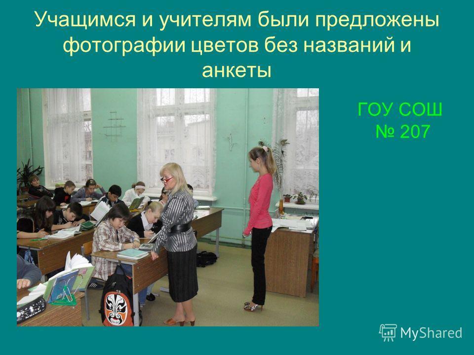 Учащимся и учителям были предложены фотографии цветов без названий и анкеты ГОУ СОШ 207
