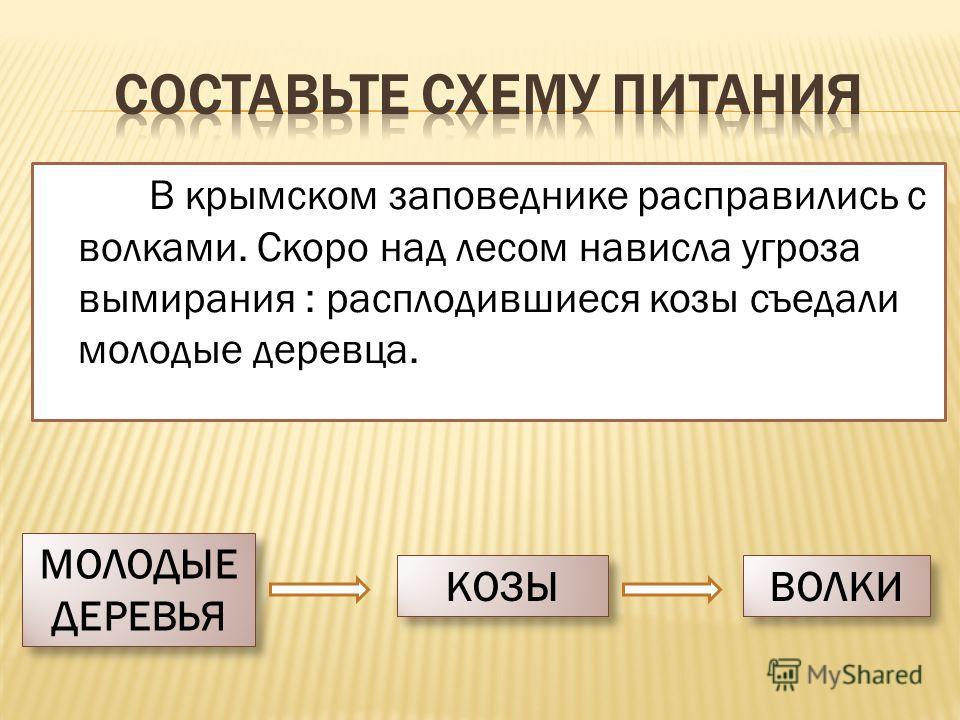 В крымском заповеднике расправились с волками. Скоро над лесом нависла угроза вымирания : расплодившиеся козы съедали молодые деревца. МОЛОДЫЕ ДЕРЕВЬЯ МОЛОДЫЕ ДЕРЕВЬЯ КОЗЫ ВОЛКИ
