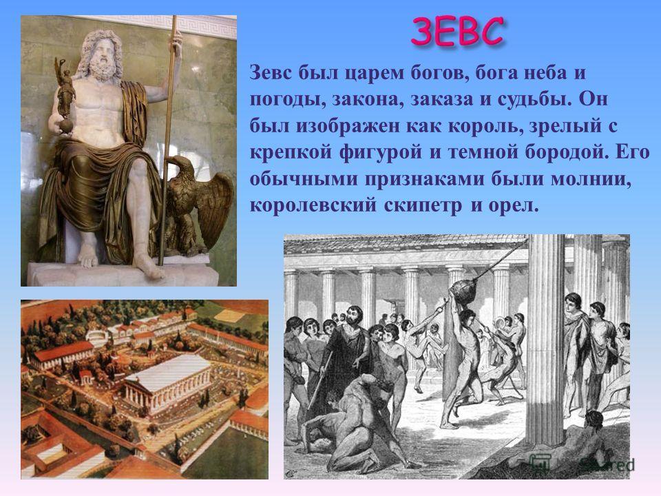 Зевс был царем богов, бога неба и погоды, закона, заказа и судьбы. Он был изображен как король, зрелый с крепкой фигурой и темной бородой. Его обычными признаками были молнии, королевский скипетр и орел.