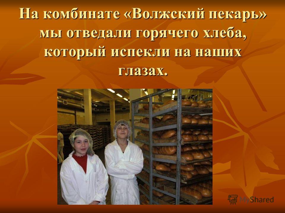 На комбинате «Волжский пекарь» мы отведали горячего хлеба, который испекли на наших глазах.