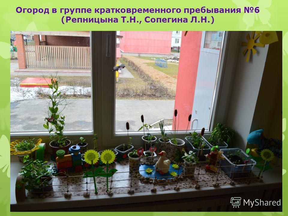 Огород в группе кратковременного пребывания 6 (Репницына Т.Н., Сопегина Л.Н.)