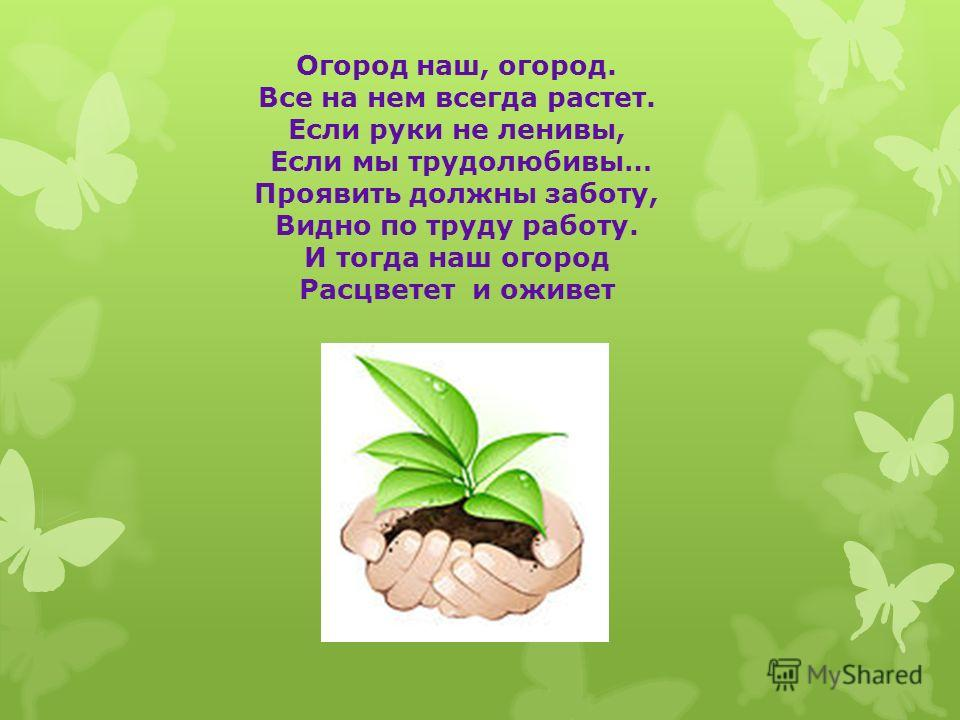 Огород наш, огород. Все на нем всегда растет. Если руки не ленивы, Если мы трудолюбивы… Проявить должны заботу, Видно по труду работу. И тогда наш огород Расцветет и оживет
