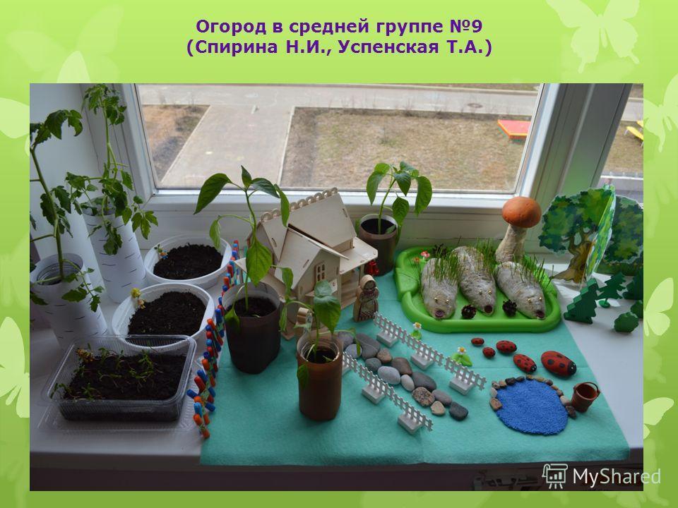 Огород в средней группе 9 (Спирина Н.И., Успенская Т.А.)