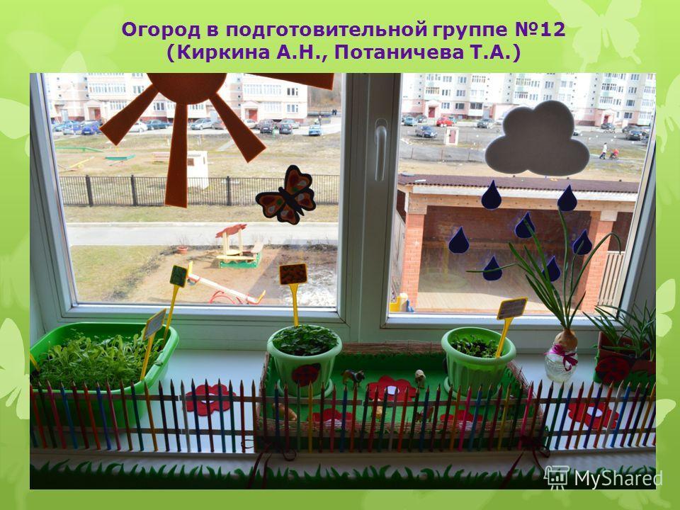 Огород в подготовительной группе 12 (Киркина А.Н., Потаничева Т.А.)