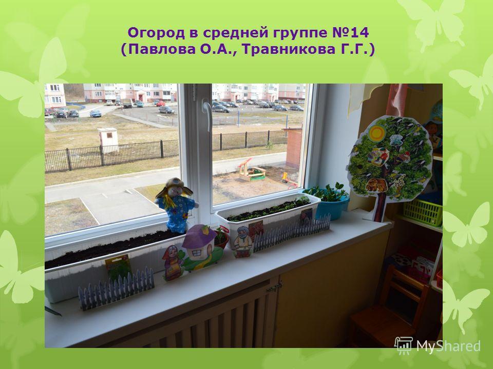 Огород в средней группе 14 (Павлова О.А., Травникова Г.Г.)
