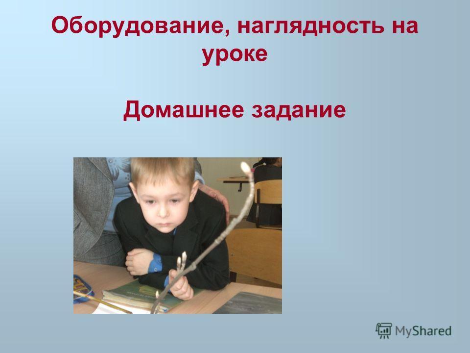 Оборудование, наглядность на уроке Домашнее задание