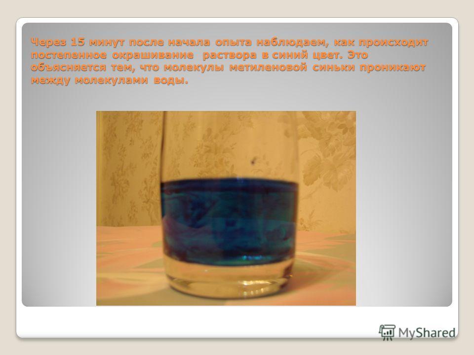 Через 15 минут после начала опыта наблюдаем, как происходит постепенное окрашивание раствора в синий цвет. Это объясняется тем, что молекулы метиленовой синьки проникают между молекулами воды.