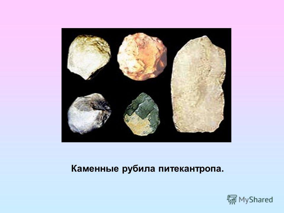 Каменные рубила питекантропа.