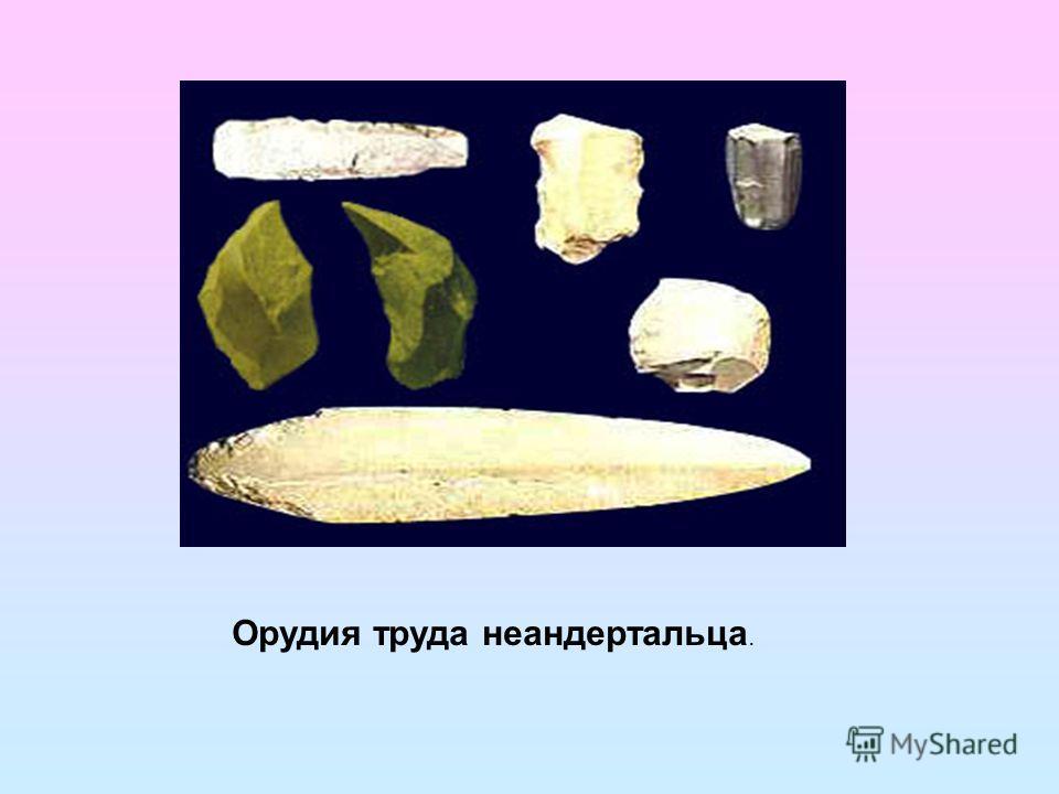 Орудия труда неандертальца.