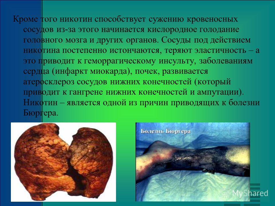 Кроме того никотин способствует сужению кровеносных сосудов из-за этого начинается кислородное голодание головного мозга и других органов. Сосуды под действием никотина постепенно истончаются, теряют эластичность – а это приводит к геморрагическому и
