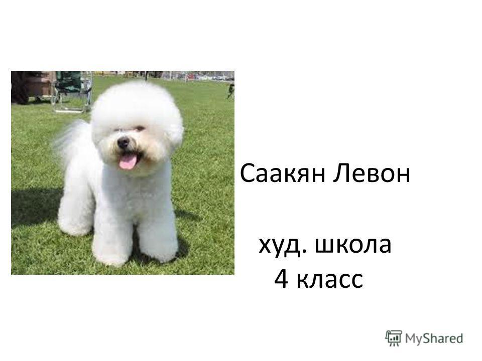 Саакян Левон худ. школа 4 класс