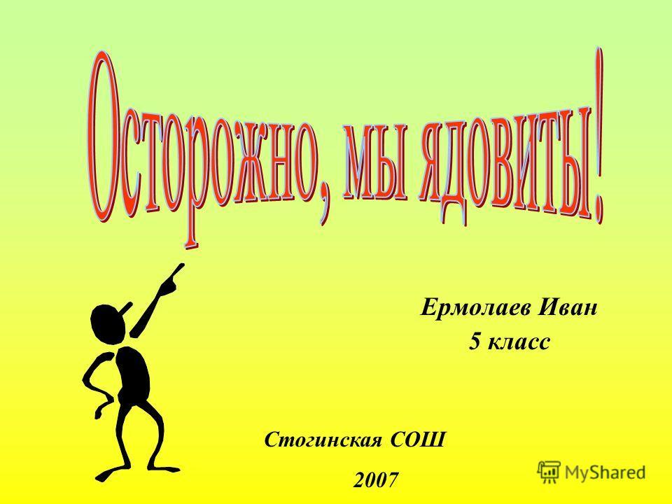 Ермолаев Иван 5 класс Стогинская СОШ 2007