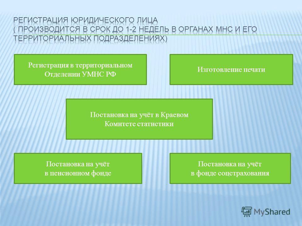 Регистрация в территориальном Отделении УМНС РФ Изготовление печати Постановка на учёт в Краевом Комитете статистики Постановка на учёт в пенсионном фонде Постановка на учёт в фонде соцстрахования