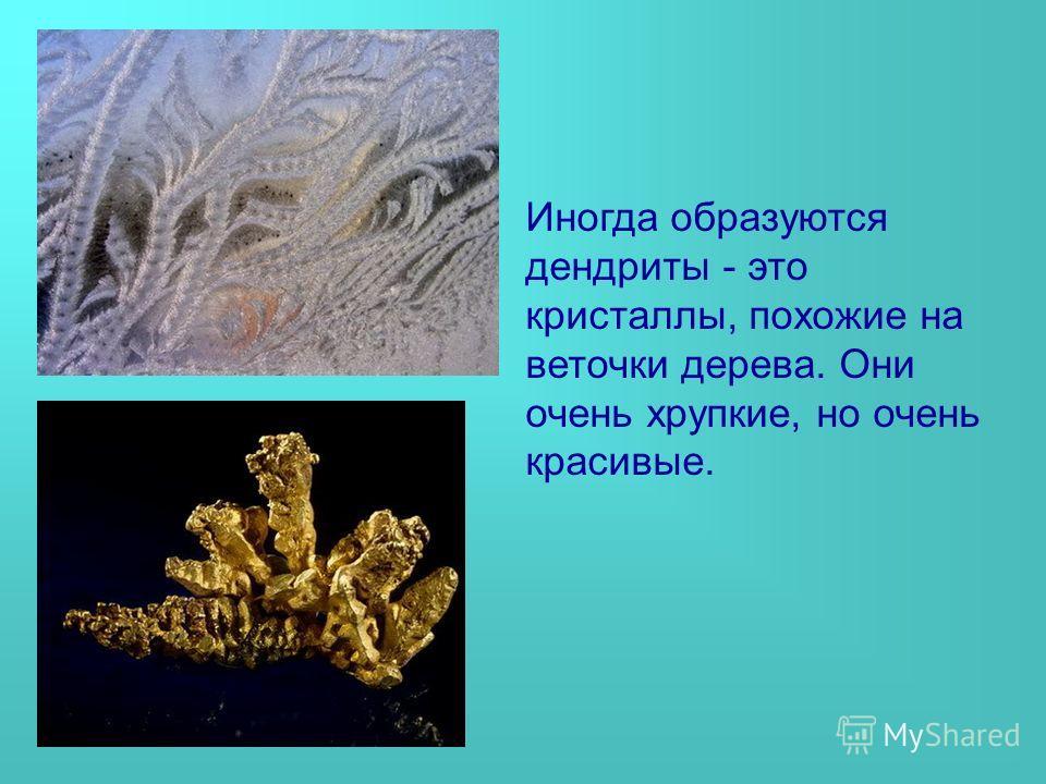 Иногда образуются дендриты - это кристаллы, похожие на веточки дерева. Они очень хрупкие, но очень красивые.